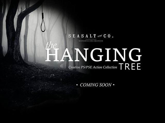 Noose Hanging From Tree
