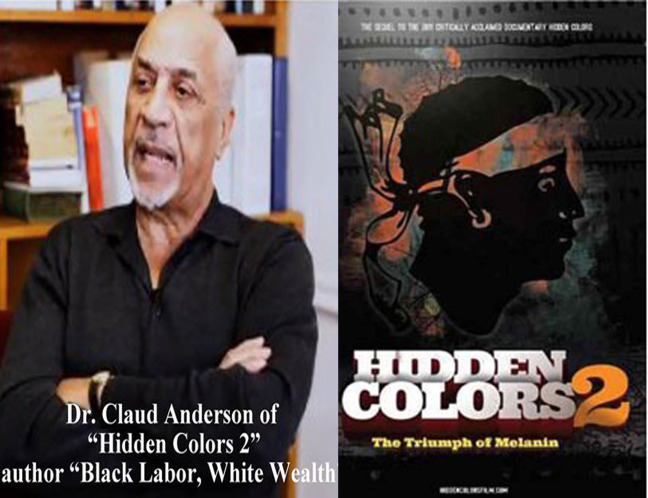dr-claud-anderson-hidden-colors-2-dvd-cover (1)