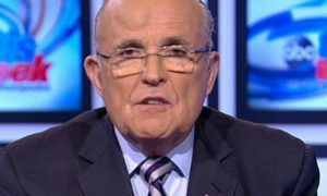 36FA9F7E00000578-0-Rudy_Giuliani_appeared_on_ABC_s_This_Week_with_a_massive_bump_on-a-40_1470596593153-620x330